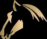 logo Heilpferde